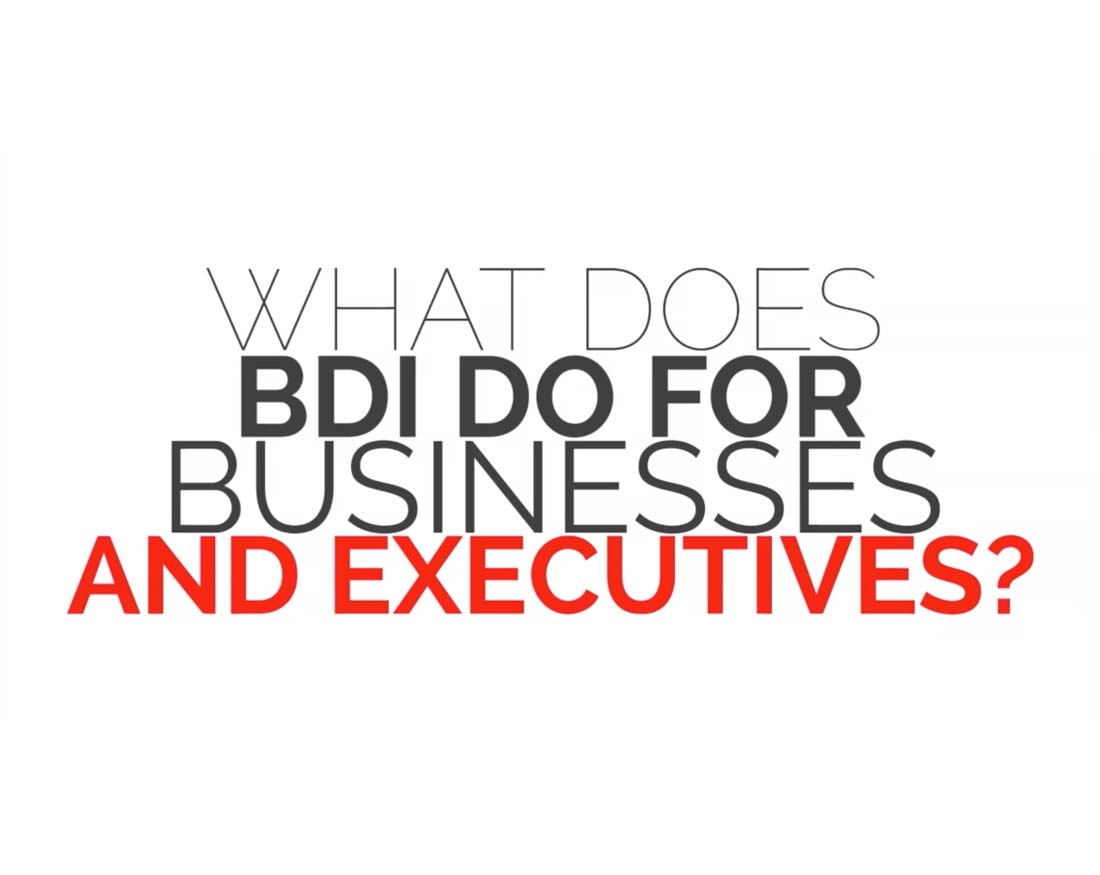 what does bdi do for businesses and executives business what does bdi do for businesses and executives business development international